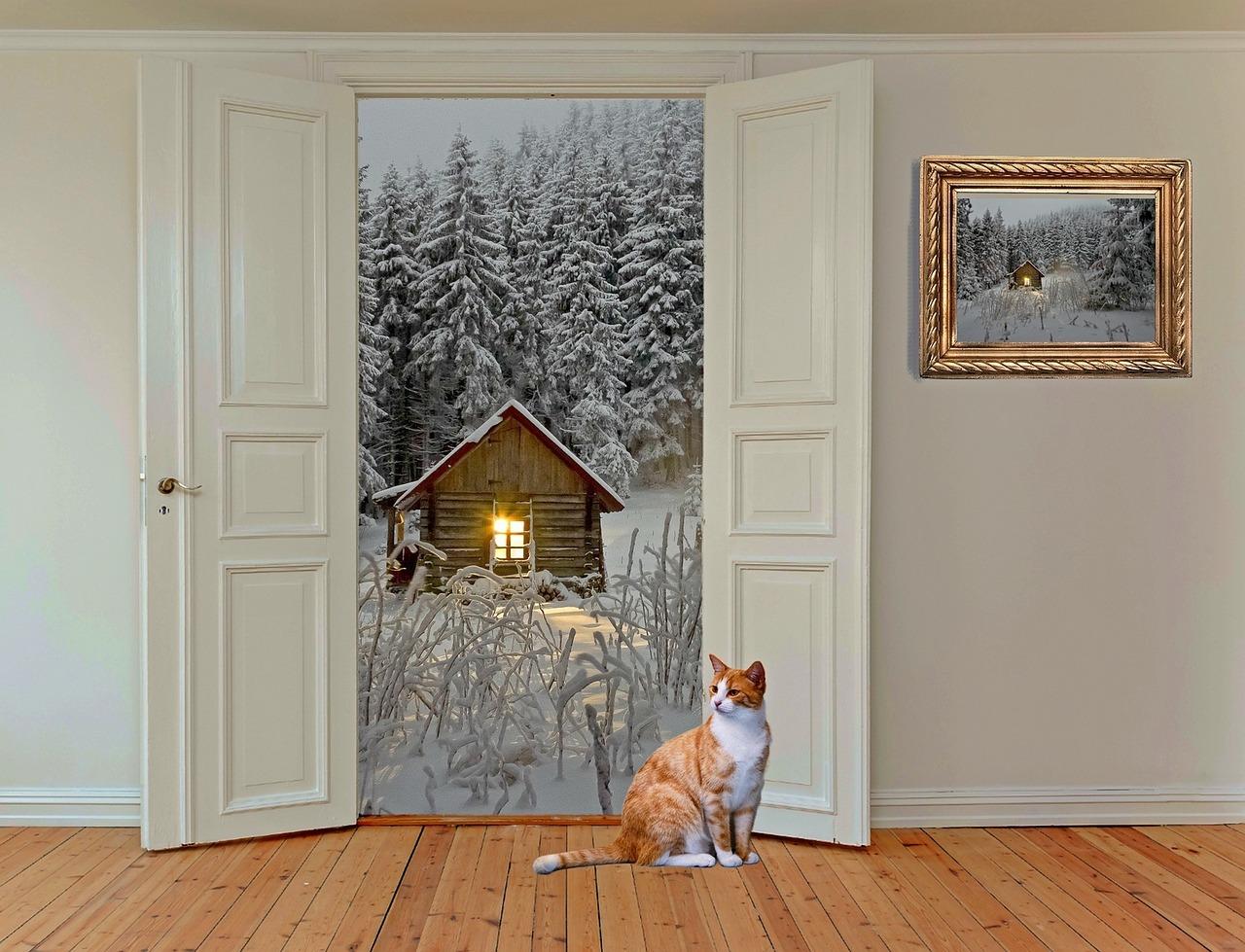 Dobieramy nowe drzwi zewnętrzne do naszego domu.
